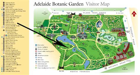 Nelumbo Pond Adelaide Map Of Melbourne Botanical Gardens