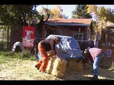 straw dog house build a straw bale house for your dog in two minutes youtube