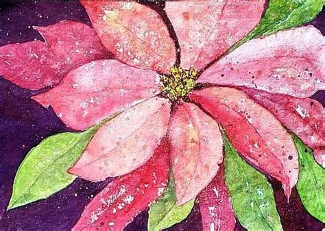 google images poinsettia 167 best poinsettia for my mom images on pinterest