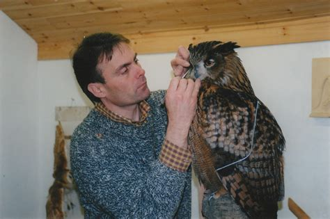 european eagle owl taxidermy bubo bubo by mike gadd