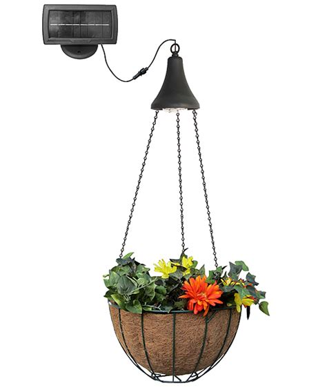 Hanging Planter Basket by Hanging Solar Spotlight With Planter Basket