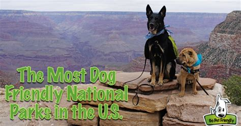 friendly national parks the most friendly national parks in the u s take paws the official pet travel