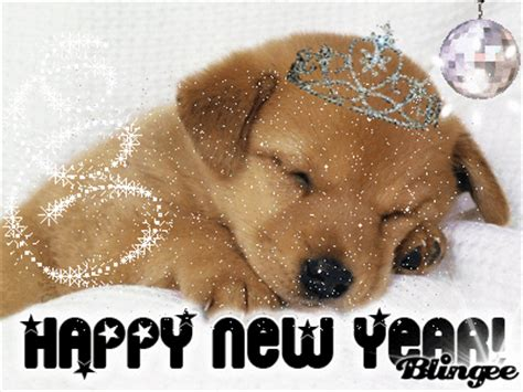 happy new year puppy happy new year picture 79642882 blingee