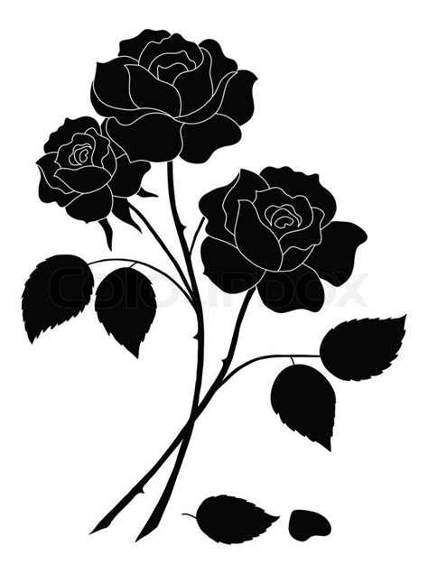 Flower For Home Decoration by Flowers Rose Silhouette Stock Photo Colourbox