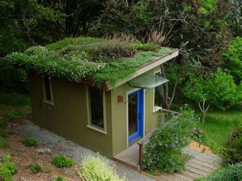 living roofs 29 best images about living roofs on green