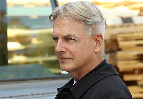 mark harmon haircut ncis season 12 spoilers gibbs second ex wife to be