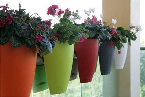 fiori per vasi da balcone come scegliere i vasi da balcone scelta dei vasi vasi