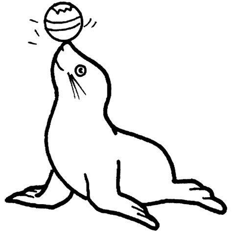 imagenes para colorear foca desenho de foca com bola no nariz para colorir tudodesenhos