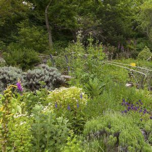 Berkeley Botanical Garden Hours by 187 Twilight Tuesdays