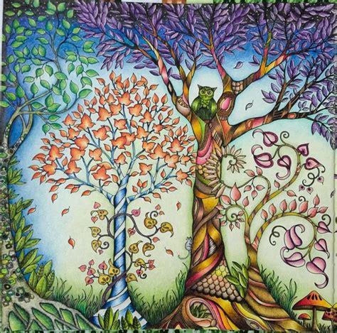 secret garden coloring book dk de 25 bedste id 233 er inden for floresta encantada livro