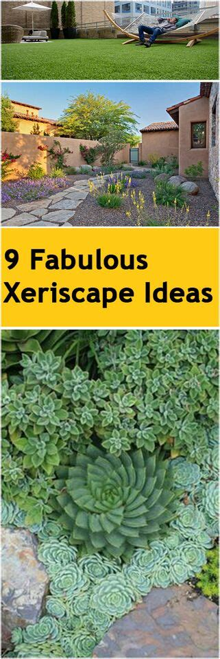 9 Fabulous In by 9 Fabulous Xeriscape Ideas Bless My Weeds