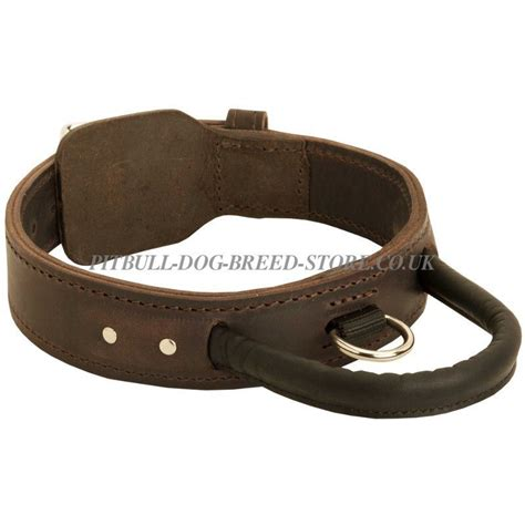 pitbull collars leather agitation collar with handle 163 36 09