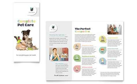 pet flyer templates free pet store brochure template design