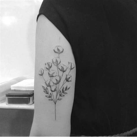 cotton flower herbarium tattoo shared by brusimoes on