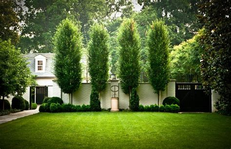 boxwood traditional landscape nashville by page