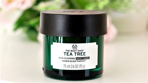 Pelembab The Shop Tea Tree the shop tea tree anti imperfection mask review