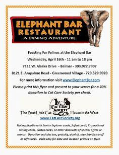 Elephant Bar Gift Card - fundraisers for cats on pinterest 23 pins