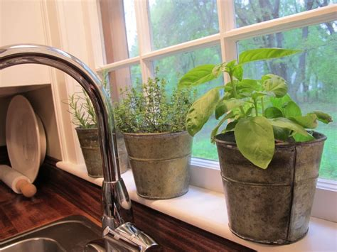 herb pots for windowsill herb pots on the window sill for the home pinterest