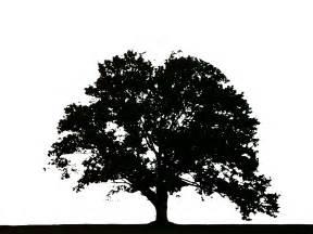 tree logos www galleryhip com the hippest pics