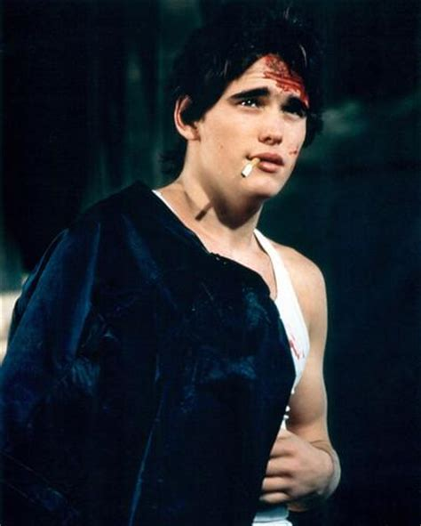 matt dillon rumble fish matt dillon rumble fish photo at allposters