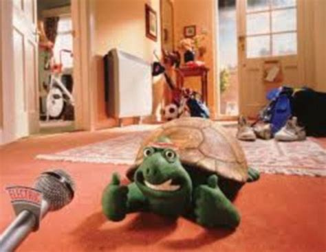 tortoise creature comforts as commercials celebrate 60 years on the small screen can