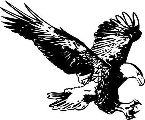 gambar vektor gratis elang hitam dan putih burung gambar gratis di pixabay 46429
