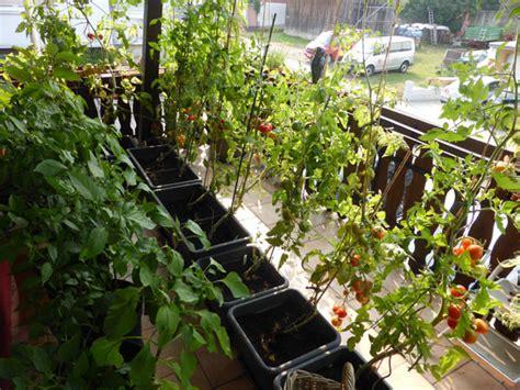 balkongarten anlegen einen bauerngarten oder cottagegarten anlegen schritt f 252 r