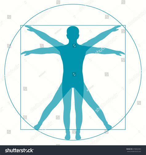 Da Search Leonardo Da Vinci Vetruvian Human Anatomy Stock Vector Illustration 370002392