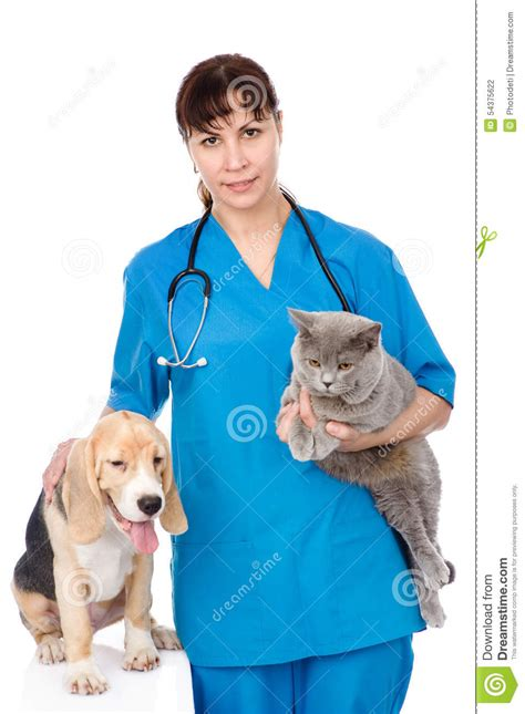 vet with cat and dog isolated on white background stock