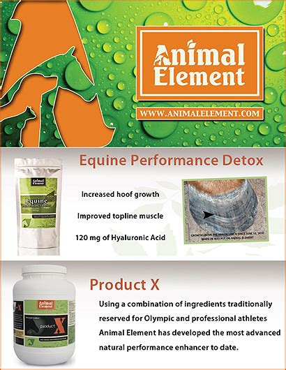 Detox Scholarly Articles by Detoxification Products For Horses