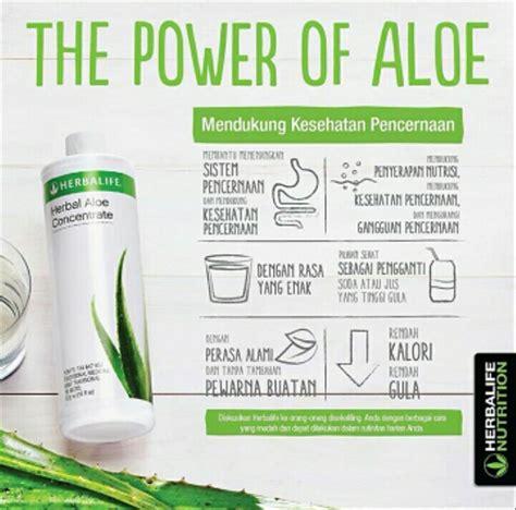 jual aloevera aloe herbalife diet  lapak herbal sehat