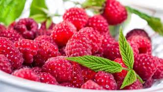 fresh raspberries full hd desktop wallpapers 1080p