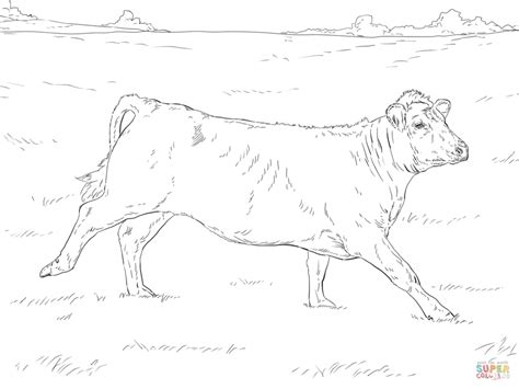 realistic cow coloring page cow coloring pages animal farm holstein cow coloring page