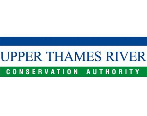thames river hatchery utrca collects trout eggs 104 7 heart fm