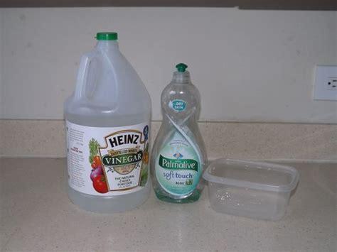Gnats In Kitchen Sink Kitchen Sinks Vinegar And Soaps On Pinterest