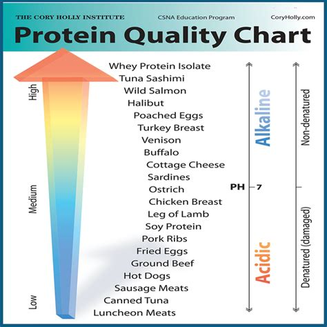protein x supplement which one is a better supplement protein x or whey protein