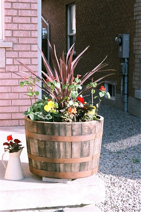 Wine Barrell Planter by Half Barrel Planters Look Great With Flowers Or Small