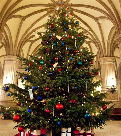 weihnachtsb 228 ume weihnachtsbeleuchtung und