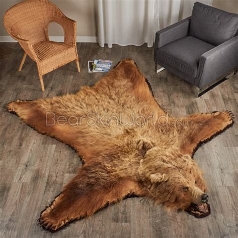 on a bearskin rug 6 foot 8 inch 203 cm grizzly rug 7000652 01