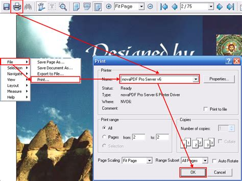 djvu image format how to convert djvu file to pdf or other more common file