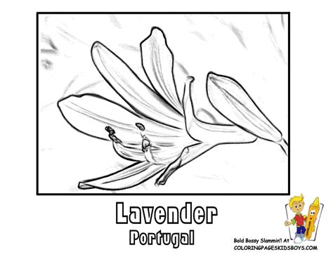 free coloring pages of of portugal