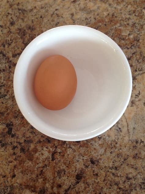 buff orpington egg color buff orpington egg color page 4