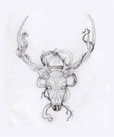 deer skull tattoo drawing tattoos book 65 000 tattoos
