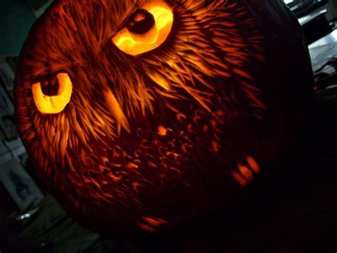 amazing fun bird themed jack o lanterns