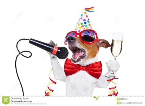 happy new year dog stock image image of karaoke glass