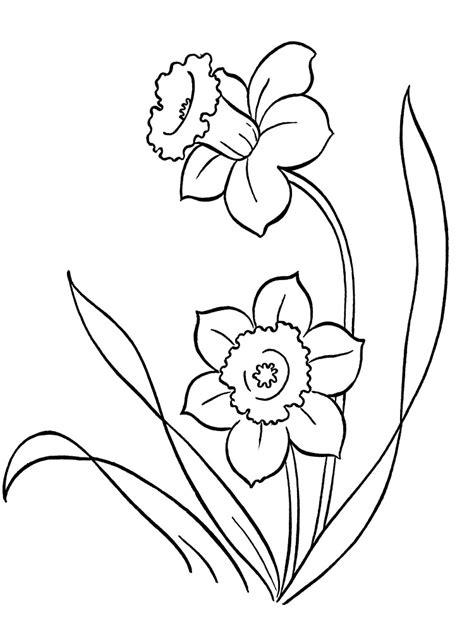 imagenes en blanco para colorear de flores flores dibujos infantiles para colorear para ni 241 os y ni 241 as