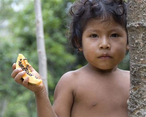 illegally young girls brazil s army moves to protect indigenous aw 225 tribe by