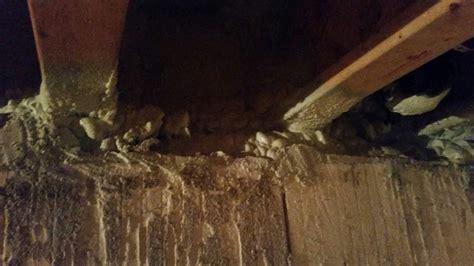basement sill plate sill plate in basement 5 quot gap hanging drywall