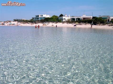 spiagge porto cesareo spiaggia delle dune a porto cesareo il bianco foto