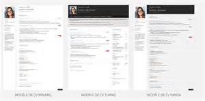 Resume Sles For It Professionals by Resume Exles For Journalists Resume Summary Sles For